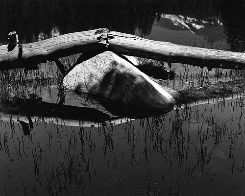 Broken Log, Tuolumne